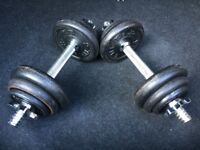 Iron Dumbbell Weights Set 20kg