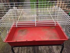 Indoor guinea pig /rabbit cage