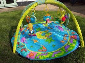 Sealife Baby Activity Gym