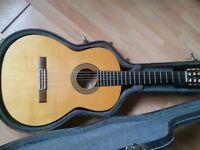 Cmaps Flamenco Guitar