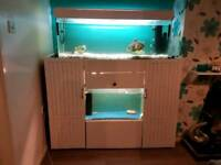 2 fishtanks and stand