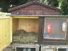 Very very large rabbit hutch 54 in long bargain £40