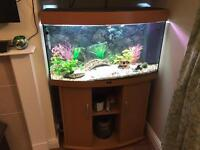 Great condition Juwel Vision 180 Aquarium with accessories RRP >£700