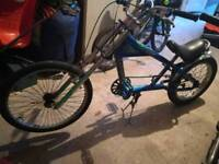 Chopper lowrider bike like Schwinn Stingray or Raleigh