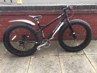 Phirana Fat Fish bike