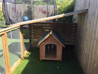 Dog kennel and run enclosure