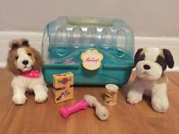 Pups, carrier and various extras