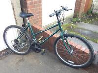 Ladies Raleigh town bike