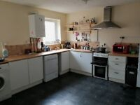 Spare room/flat share