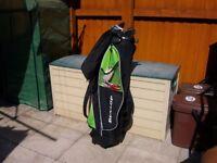 Ladies Golf Clubs plus Bag