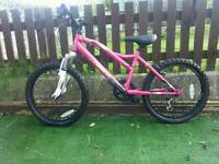 Girls Muddyfox Mountain Bike