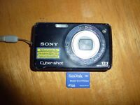 Sony cyber-shot DCS-W220 12.1 mega pixel digital camera