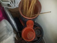 Job Lot Plans Pots 100+ various sizes and drip trays