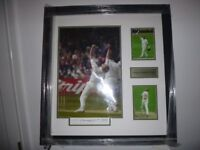 "FREDDIE FLINTOFF SIGNED FRAME DISPLAY 29"" x 27"""
