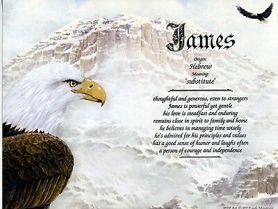 Eagle Mountain  Name Meaning Print Personalized  Birds Patriotic Inspirational