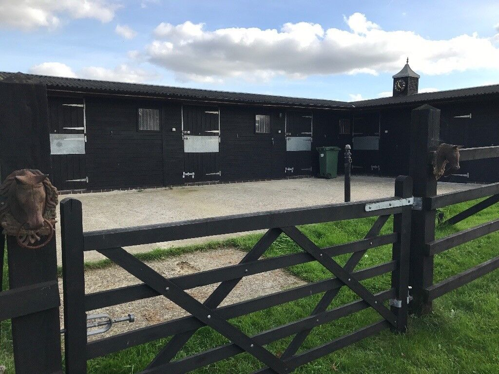 Stables and grazing to rent