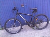 Ridgeback mounting bike