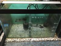 2ft Clearseal Fish Tank Aquarium - full setup