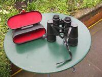 jaguar binoculars black + case