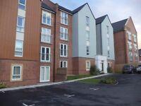 single room immediately rent per month 330 in new flat