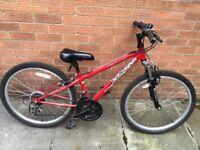 "Red 20"" Mountain Bike"
