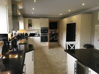 5 bed house 9.6 acres croft for sale