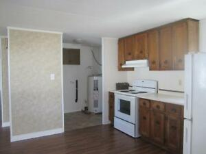 3 BEDROOM MOBILE HOME  FOR RENT OCT 1/17