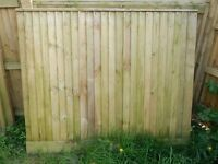 Fence panels, posts, gate and trellis.