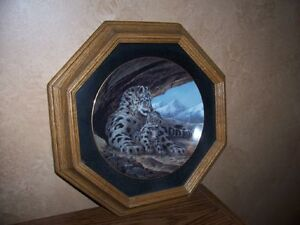 Collectible Plates & Frames - Wild Cats