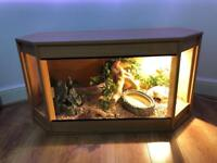 Custom made vivarium complete with full set up now reduced in price !