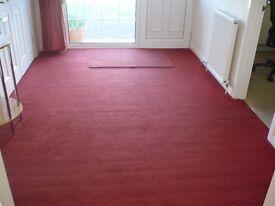 Carpet. Excellent Condition. Terricotta Colour.