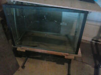 Fish Tank, glass large