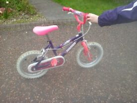 """Child's Magna """"Wild"""" Pink/Purple/White Bicycle with 14inch wheels"""