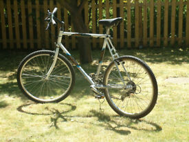 Raleigh Discovery, Shimano 200GS Integrated, Reynolds 501 Tubing
