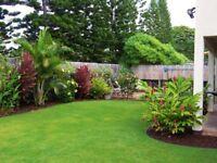 Gardening Services & Maintenance – Essex area
