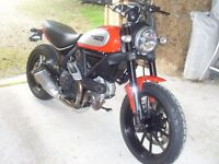Ducati Scrambler Icon - as New. May take p/x Van or bike
