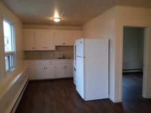 Nice 1 Bdrm Suite -  $750/mth  Avail March 1st