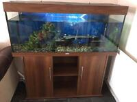 Jewel rio fish tank and full set up. With spares of everything. Vgc!