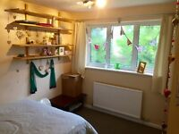 Two double rooms in lovely house to rent