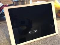 "iPad Pro 13"" 32GB - Gold"