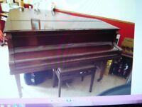 Beautiful Schidermayer grand Piano