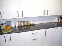 SWAP ONLY!!! MY KENTISH TOWN FLAT with own large garden, WANTING 1 bed GARDEN flat.