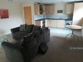 2 bedroom flat in Windsor Court, Newcastle, ST5 (2 bed) (#1123744)