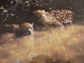 JAGUARS - David Shepherd limited edition print - numbered 1393 of 1500