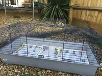 Indoor rabbit/Guinea pig hutch