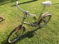 Raleigh Folding Bike (2 available)