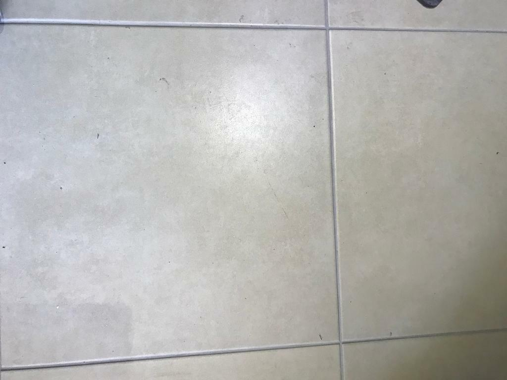 500x500 floor tiles in fforestfach swansea gumtree 500x500 floor tiles dailygadgetfo Gallery