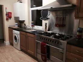 Double Room Professional House Share NO DEPOSITS NO FEES