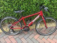 Genesis Alpha 24W Kids Bike