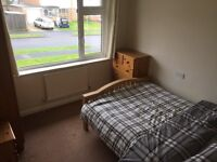 Double room in large spacious house